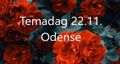 Temadag den 22.11.2021 i Odense